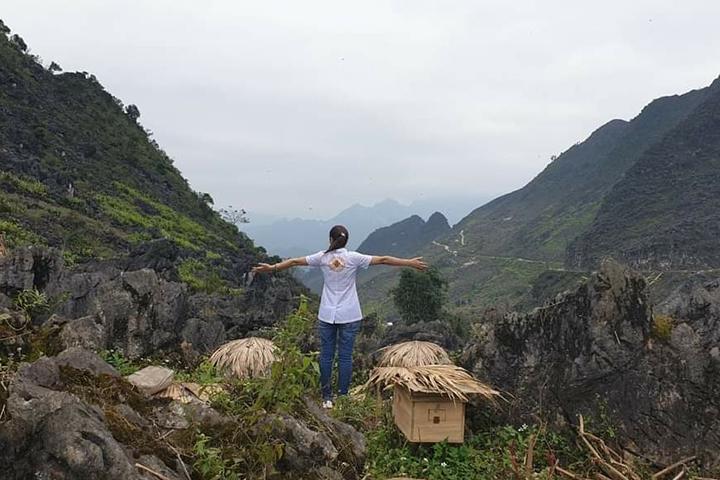 Mật ong rừng nguyên chất -Mật ong chín Honimore Mẹ Tiên được khai thác trên Núi cao