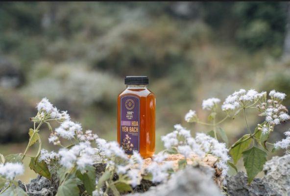 Mật ong rừng Hoa Yên Bạch - 100% Mật ong chín Honimore