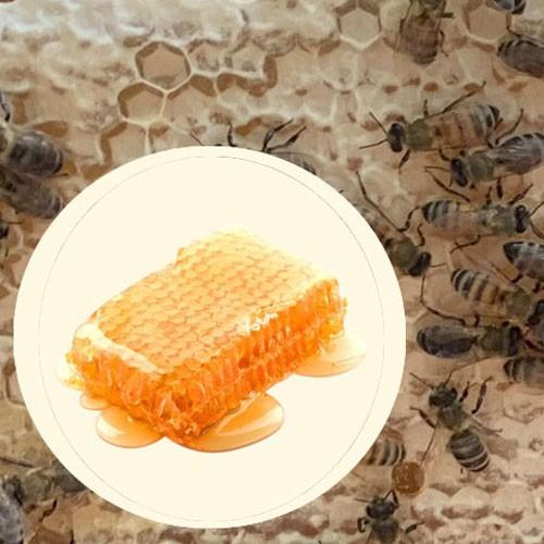 Mật ong rừng Honimore Hoa Miền Núi hũ 360g