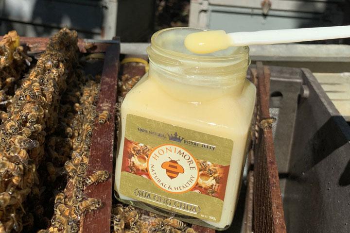 Sữa ong chúa Honimore