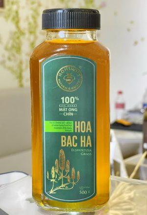 Mat ong rung Hoa bac ha 1