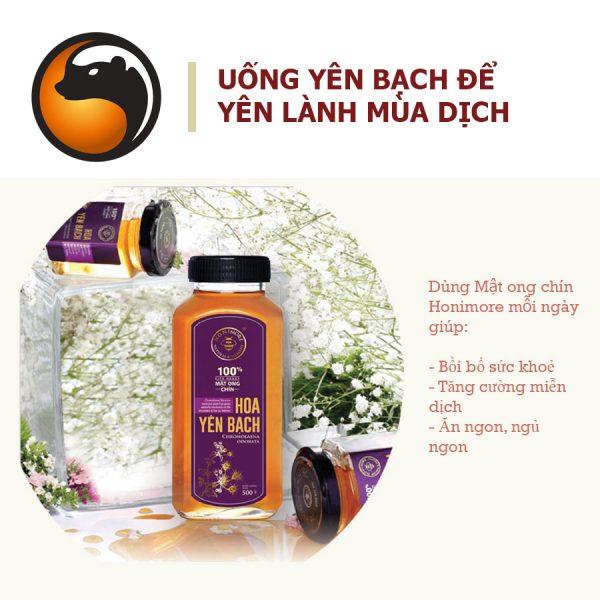 Set 2 chai mật ong rừng Hoa Yên Bạch - 100% Mật ong chín Honimore